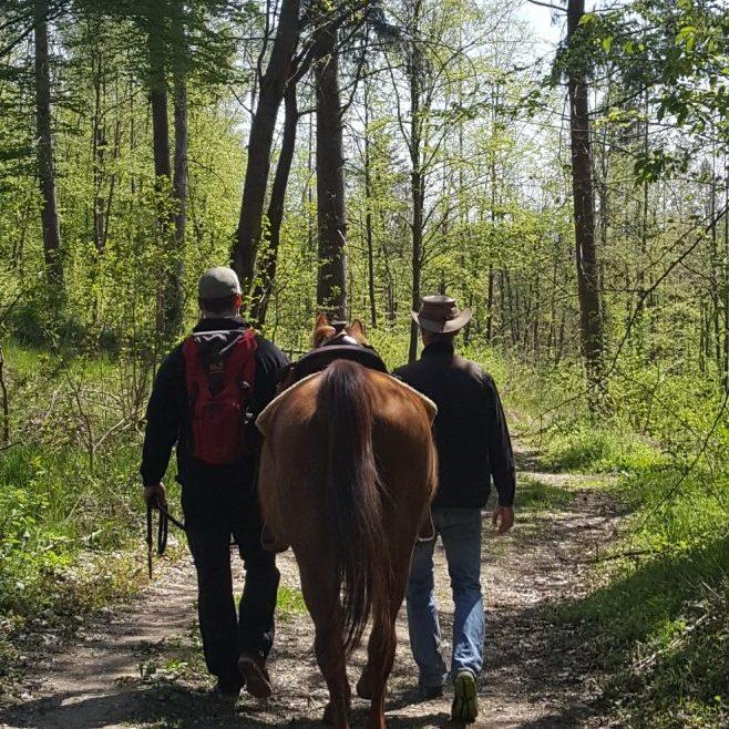 2 Männer und ein Pferd...